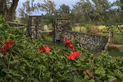 Gated rock wall entrance with red hibiscuses for 55-3098 Park Road of North Kohala HI on behalf of Algood Hawaii LLC, Realtor Broker Holly Algood